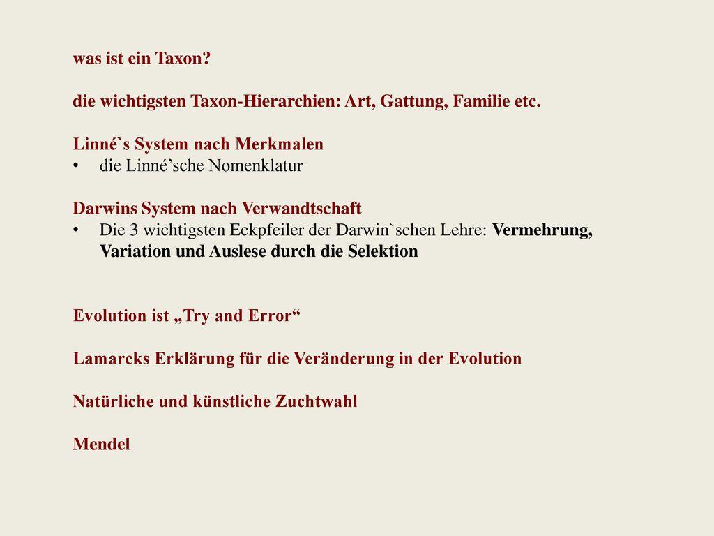 was ist ein Taxon die wichtigsten Taxon-Hierarchien: Art, Gattung, Familie etc. Linné`s System nach Merkmalen.