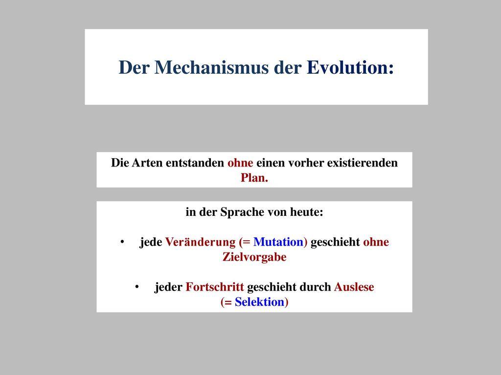 Der Mechanismus der Evolution: