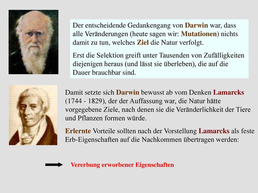 Der entscheidende Gedankengang von Darwin war, dass alle Veränderungen (heute sagen wir: Mutationen) nichts damit zu tun, welches Ziel die Natur verfolgt.