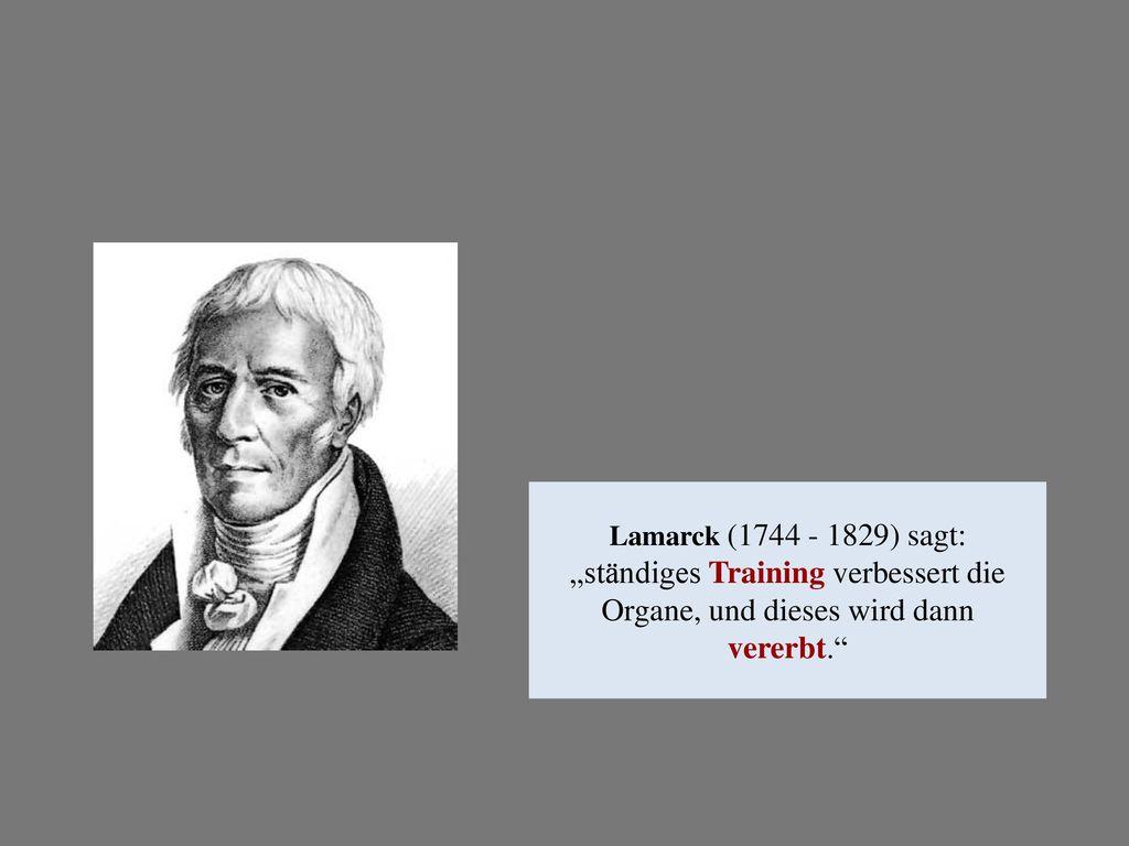 """Lamarck (1744 - 1829) sagt: """"ständiges Training verbessert die Organe, und dieses wird dann vererbt."""