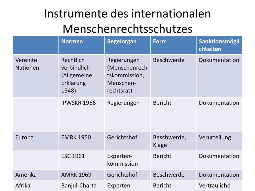 Instrumente des internationalen Menschenrechtsschutzes