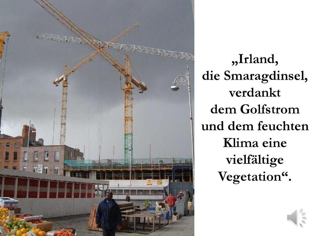 """""""Irland, die Smaragdinsel, verdankt dem Golfstrom und dem feuchten Klima eine vielfältige Vegetation ."""