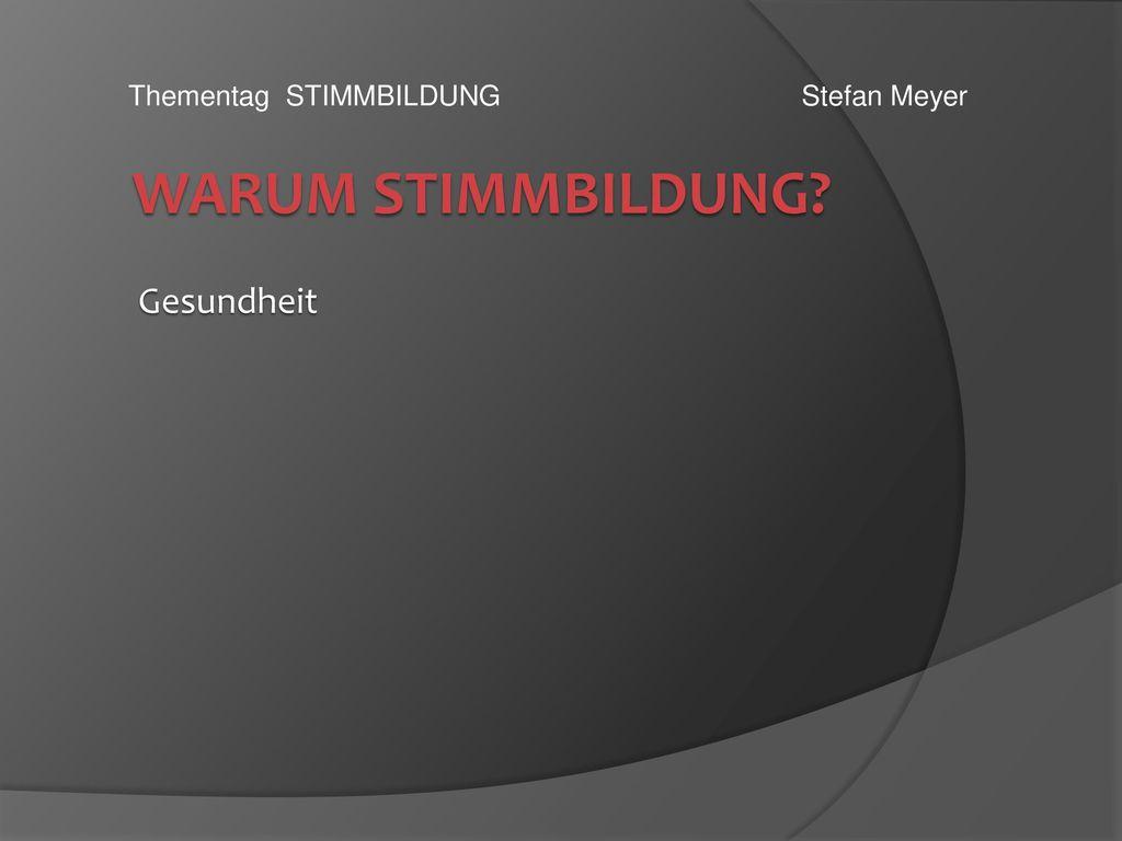 Thementag STIMMBILDUNG Stefan Meyer