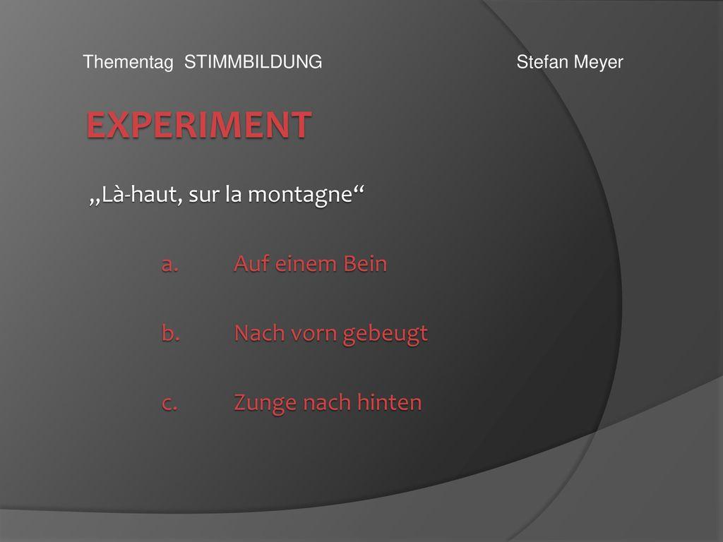 """Experiment """"Là-haut, sur la montagne a. Auf einem Bein"""