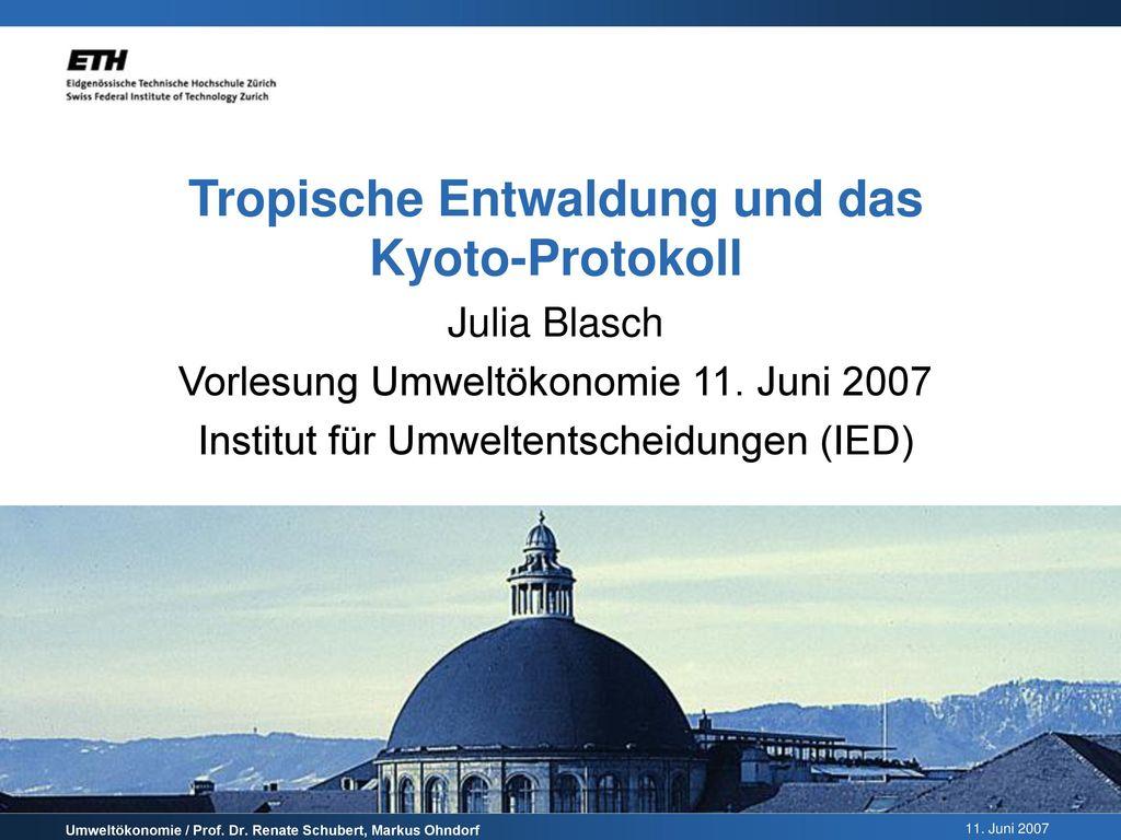 Tropische Entwaldung und das Kyoto-Protokoll