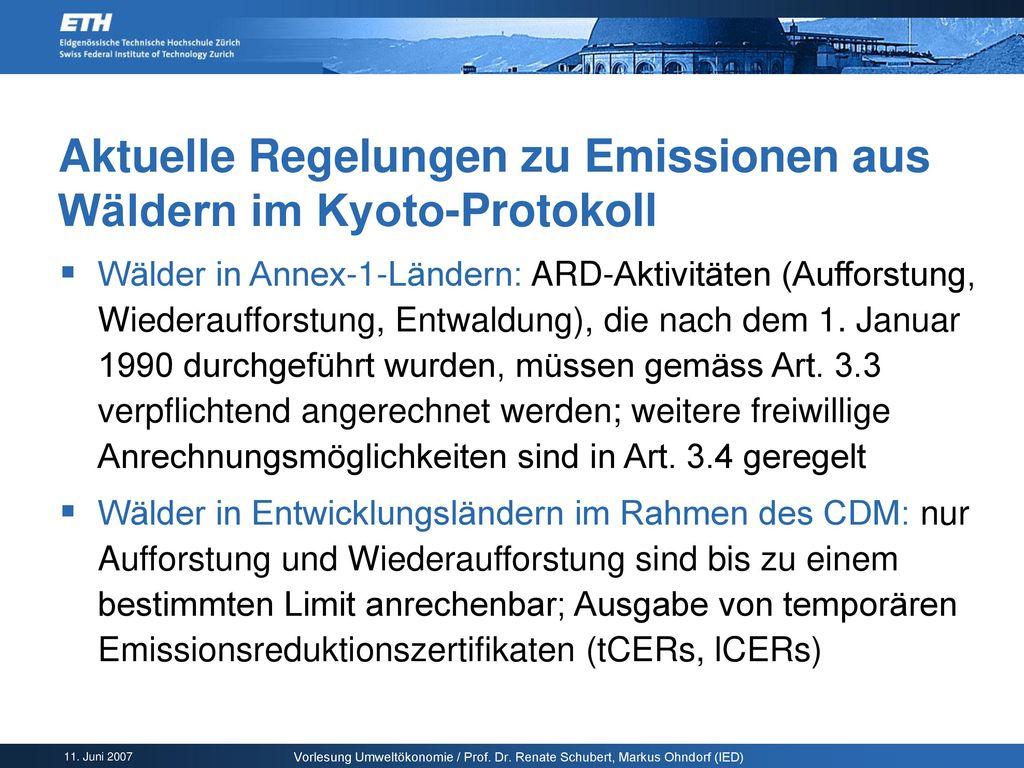Aktuelle Regelungen zu Emissionen aus Wäldern im Kyoto-Protokoll