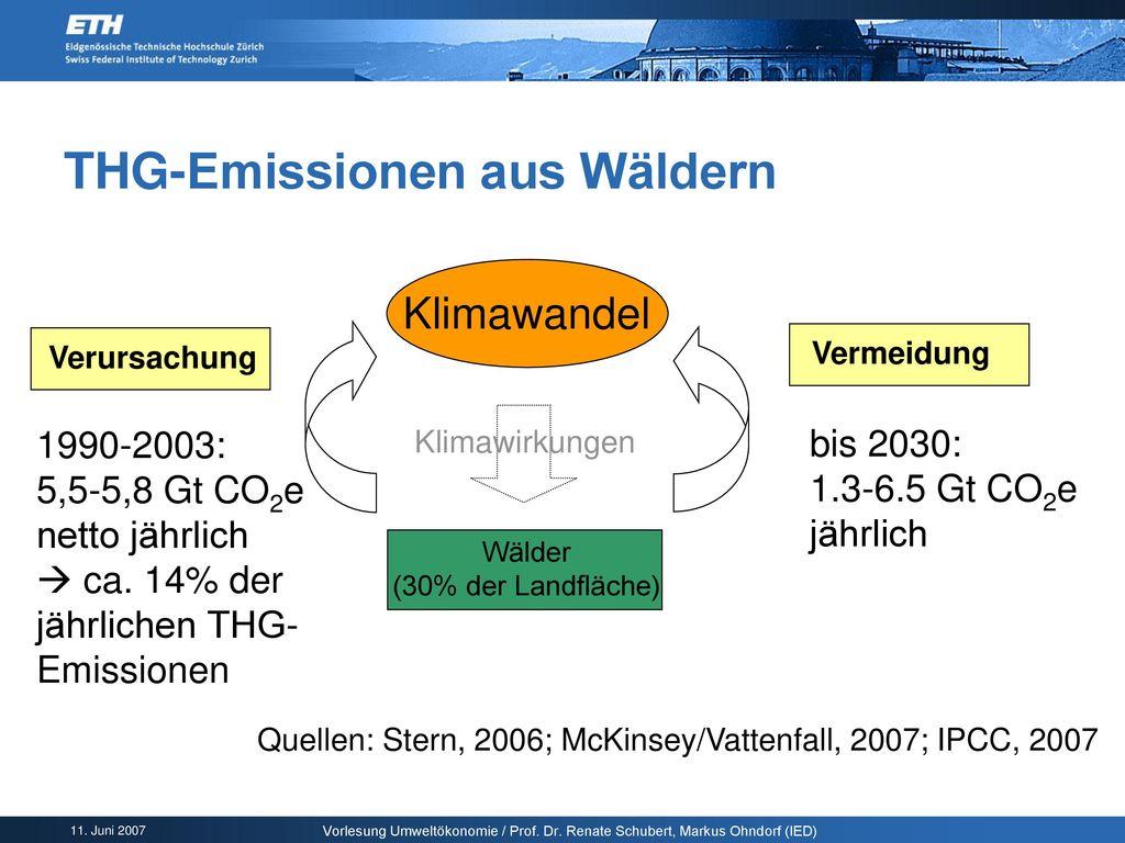 THG-Emissionen aus Wäldern