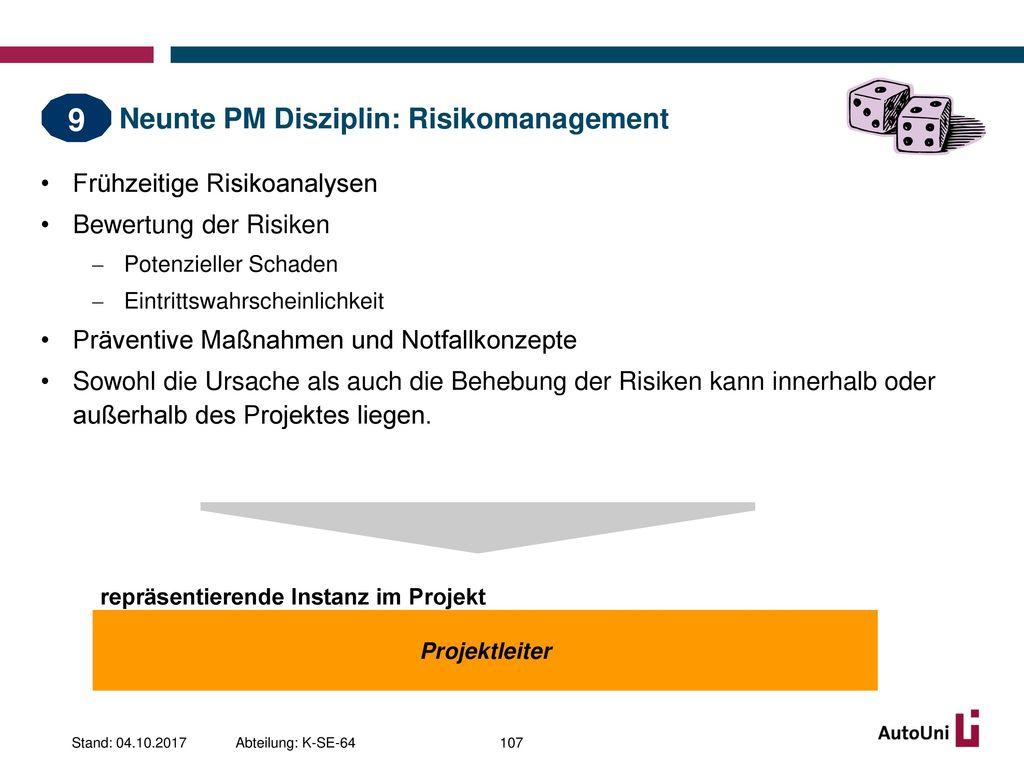 Neunte PM Disziplin: Risikomanagement
