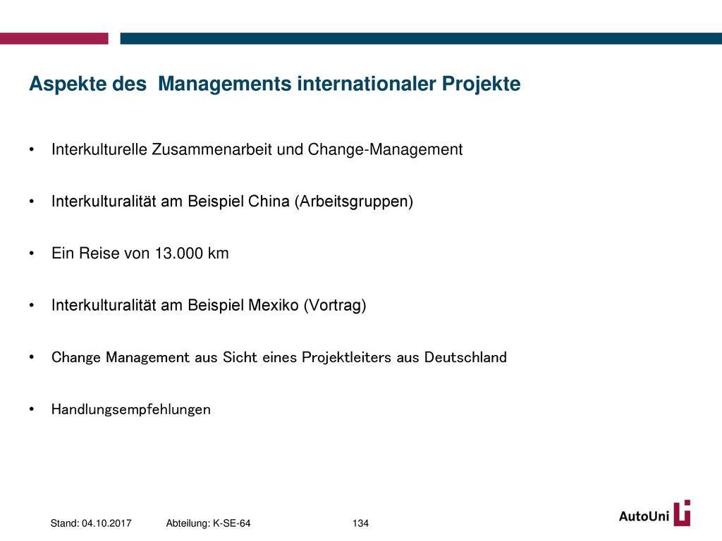 Aspekte des Managements internationaler Projekte