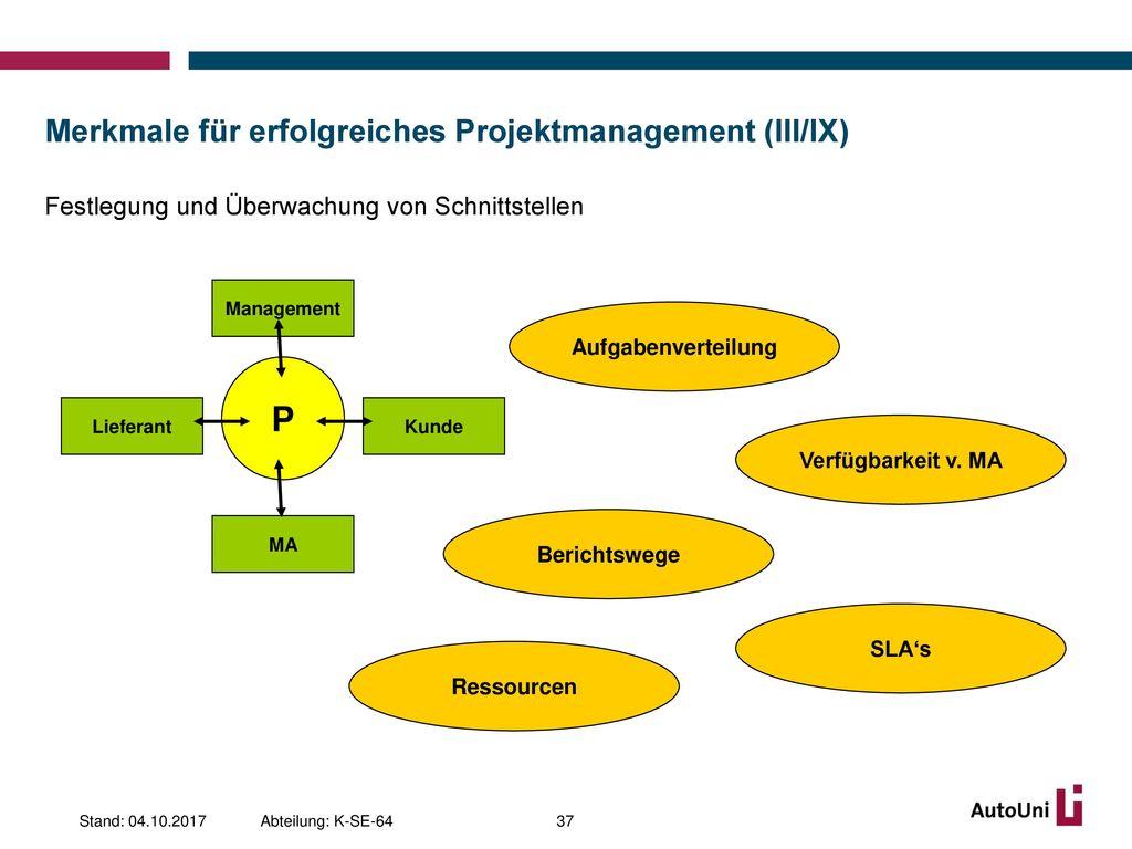 Merkmale für erfolgreiches Projektmanagement (III/IX)