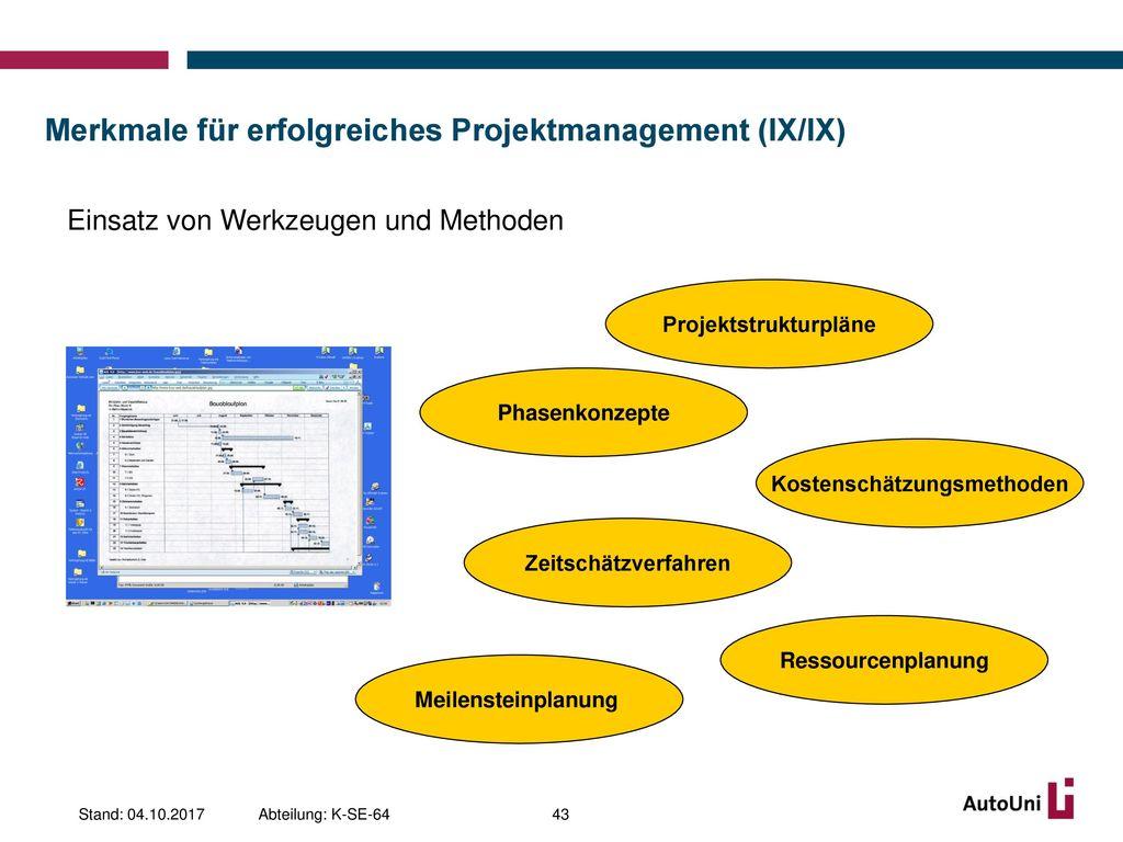 Merkmale für erfolgreiches Projektmanagement (IX/IX)