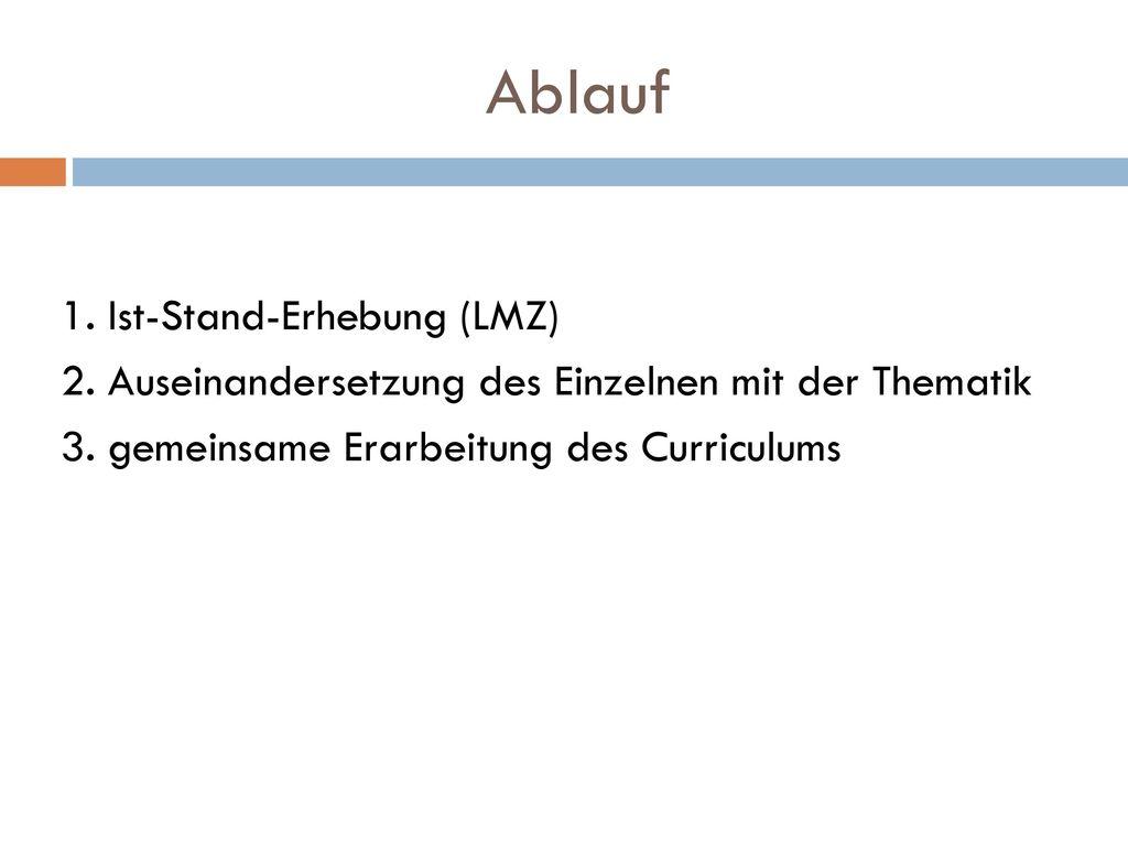Ablauf 1. Ist-Stand-Erhebung (LMZ)