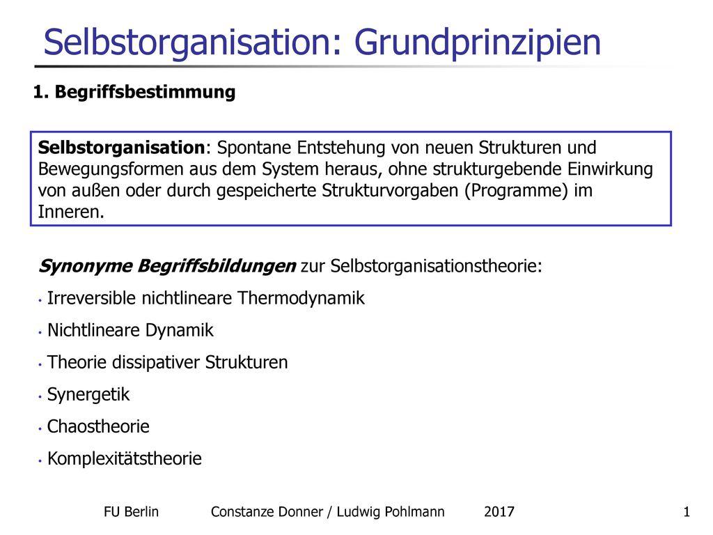 Selbstorganisation: Grundprinzipien