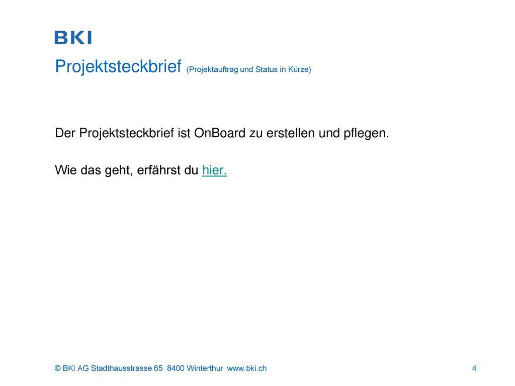 Projektsteckbrief (Projektauftrag und Status in Kürze)