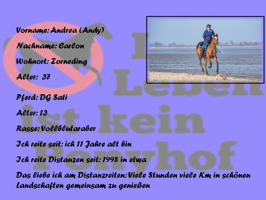 Vorname: Andrea (Andy)