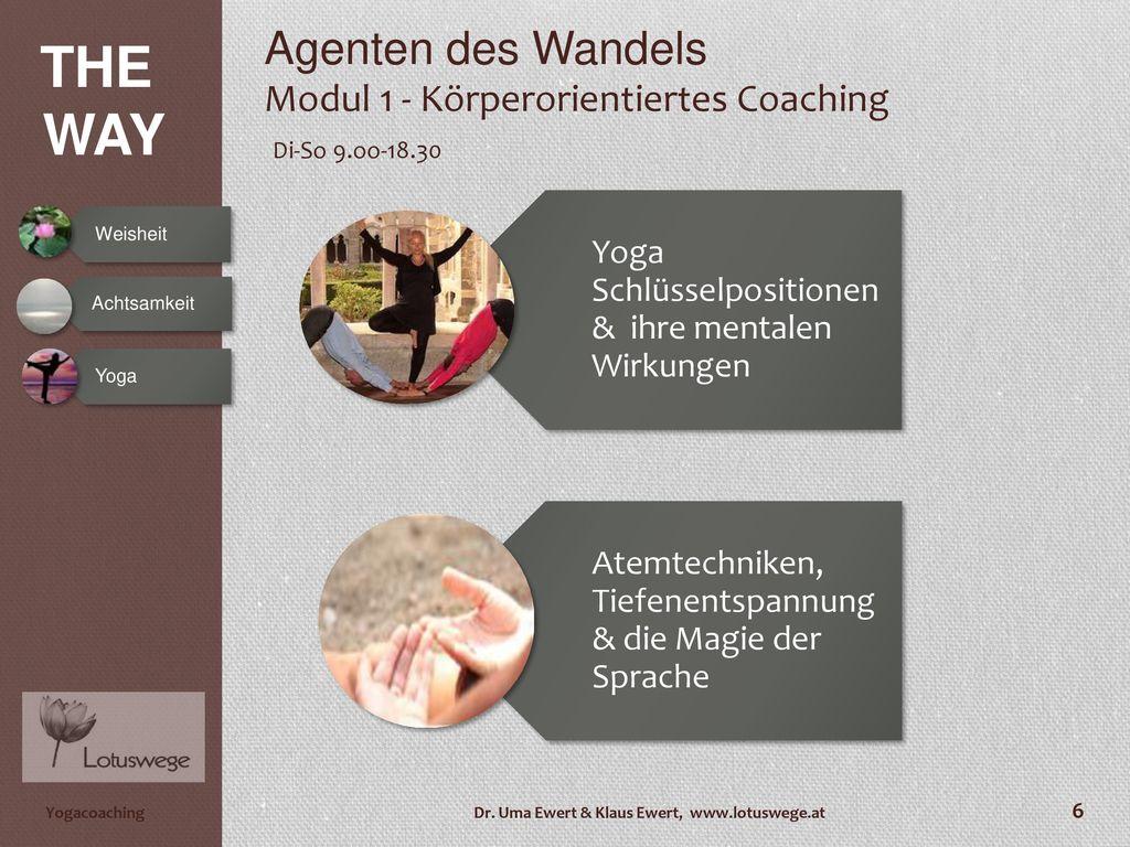 Agenten des Wandels Modul 1 - Körperorientiertes Coaching Di-So 9