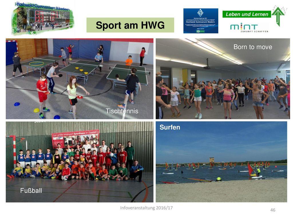 Sport am HWG Born to move Tischtennis Surfen Fußball Fußball Fußball