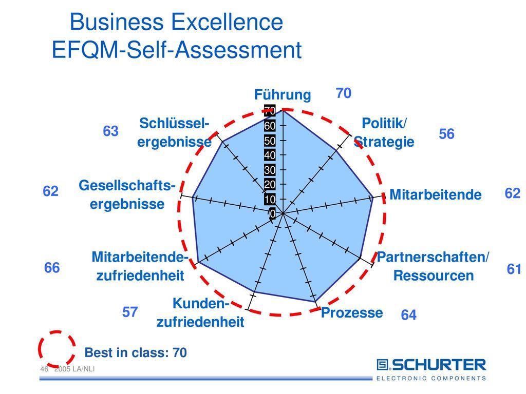 Business Excellence EFQM-Self-Assessment