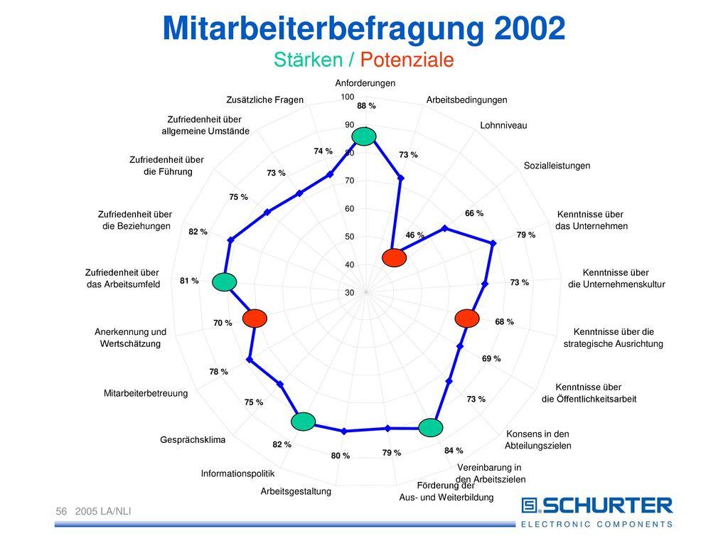 Mitarbeiterbefragung 2002 Stärken / Potenziale