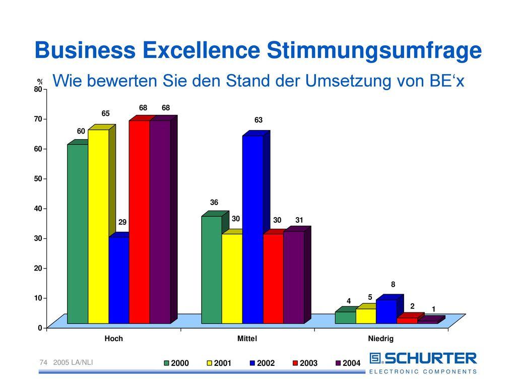Business Excellence Stimmungsumfrage