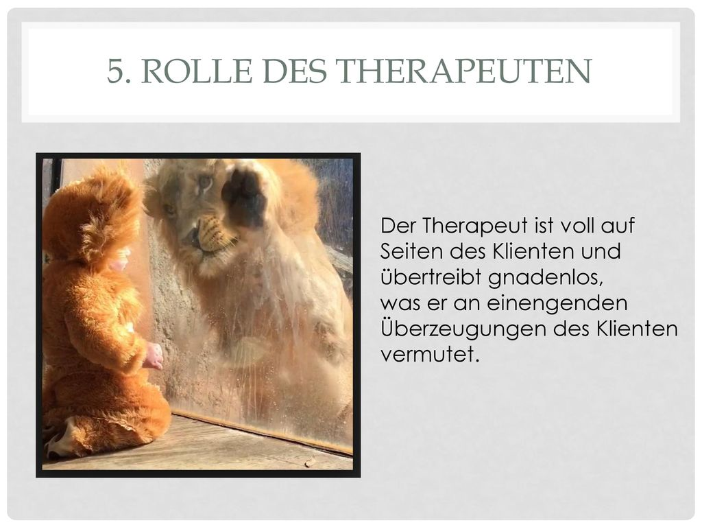5. Rolle des Therapeuten