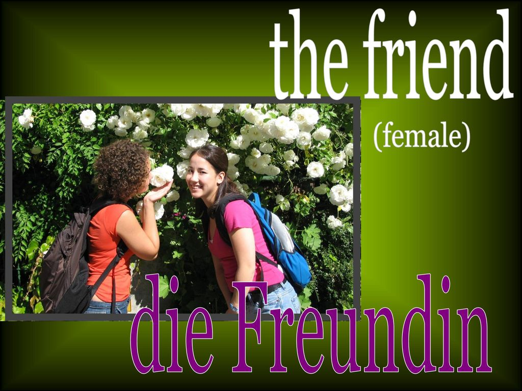the friend (female) die Freundin
