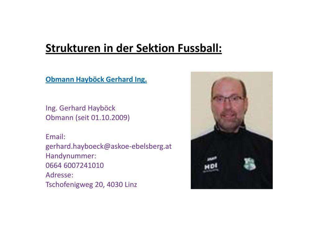 Strukturen in der Sektion Fussball:
