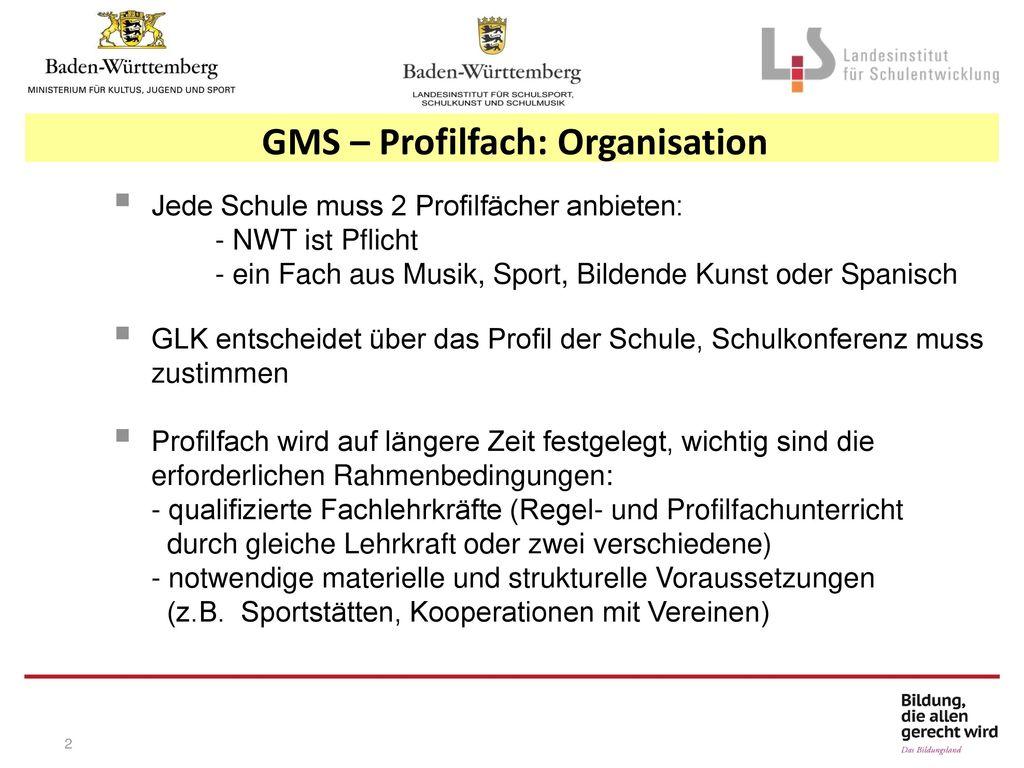 GMS – Profilfach: Organisation