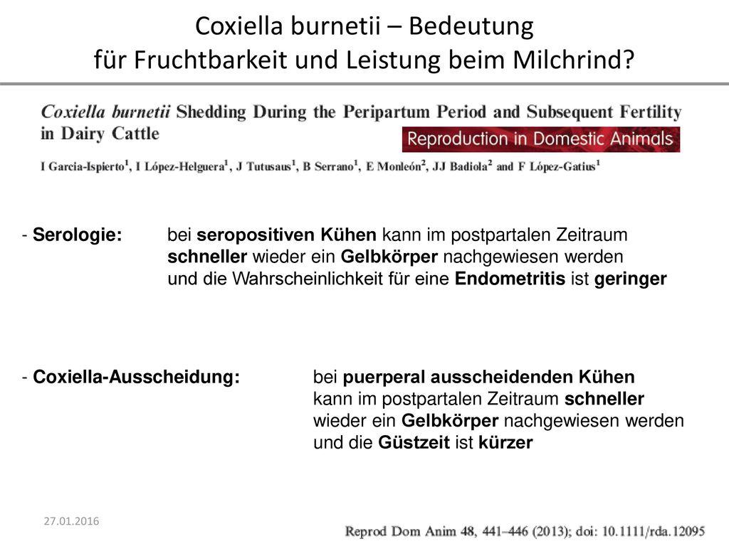 Coxiella burnetii – Bedeutung für Fruchtbarkeit und Leistung beim Milchrind