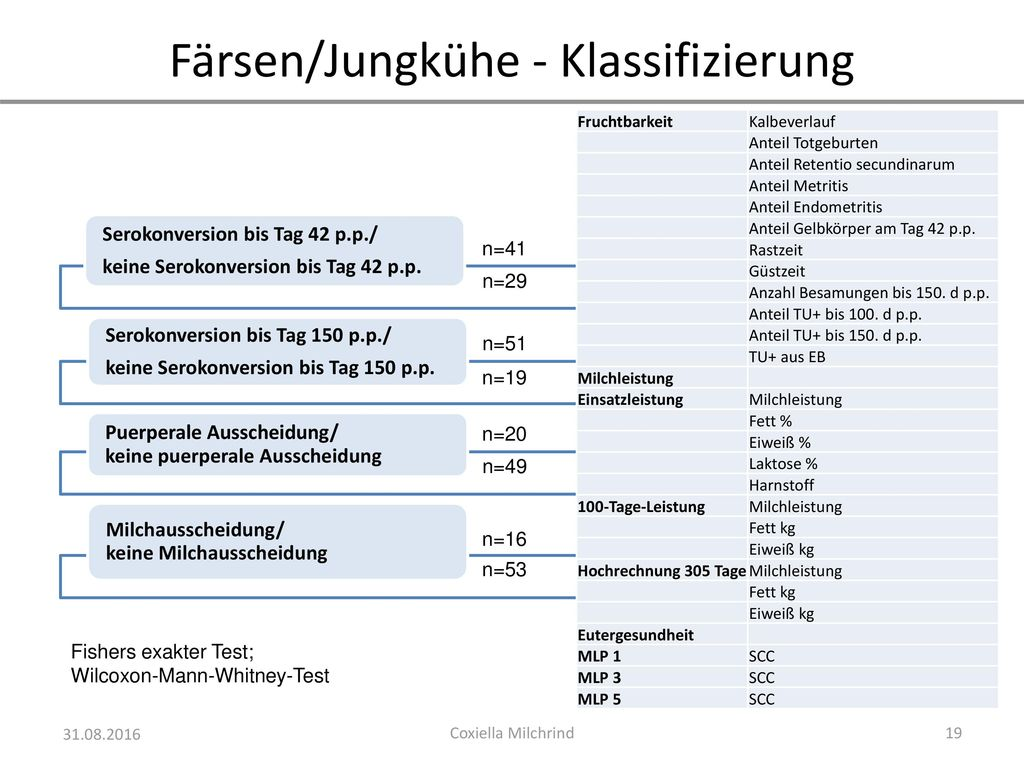 Färsen/Jungkühe - Klassifizierung