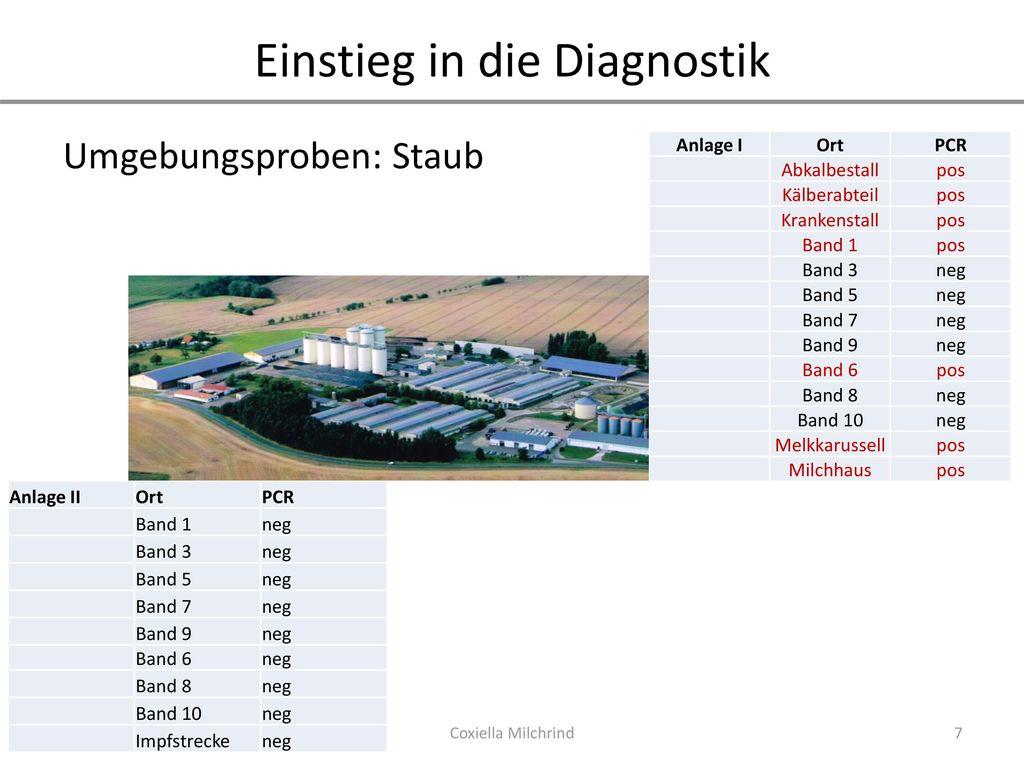 Einstieg in die Diagnostik