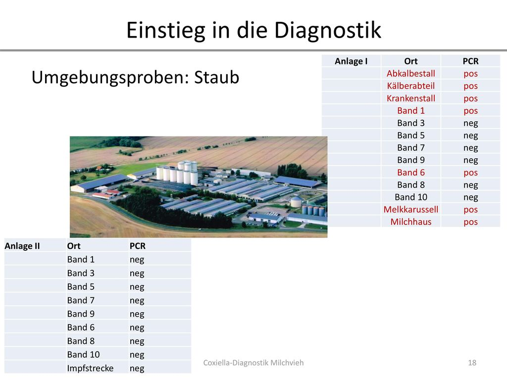 Einstieg in die Diagnostik