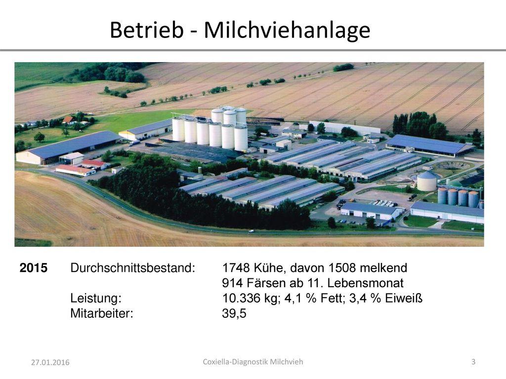 Betrieb - Milchviehanlage