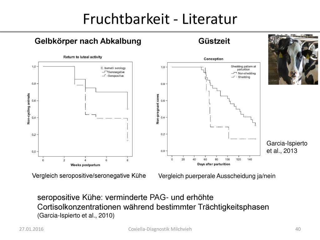 Färsen/Jungkühe - Literatur