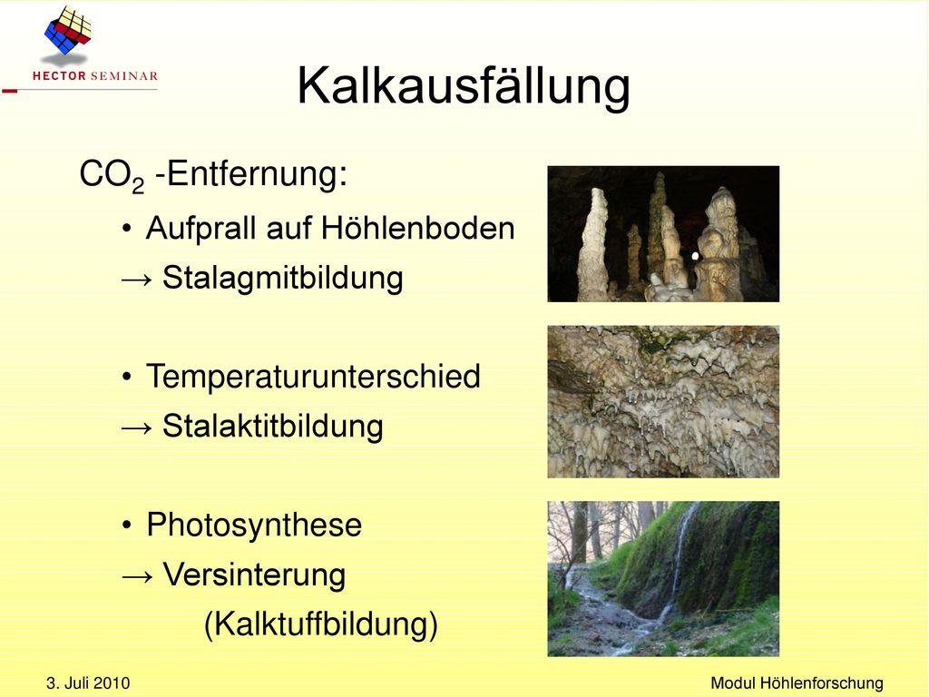 Modul Höhlenforschung