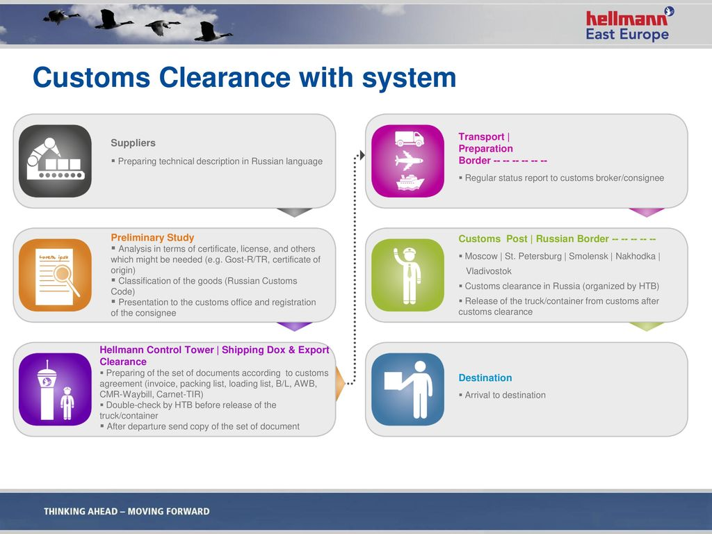 Customs Clearance with system