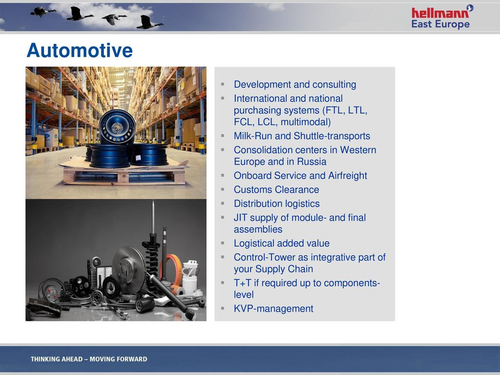 Automotive Development and consulting