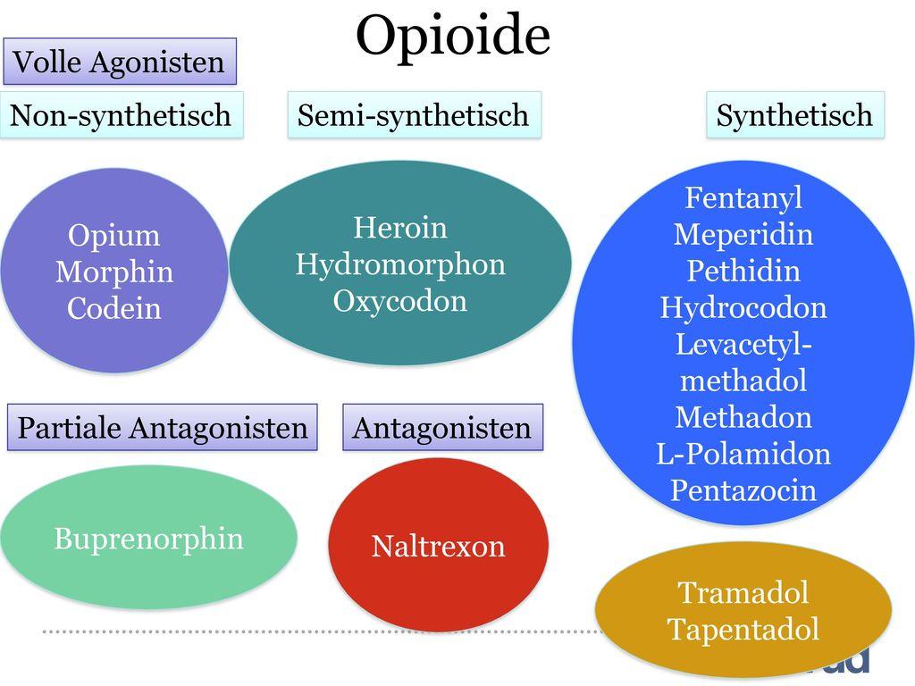Opioide Volle Agonisten Non-synthetisch Semi-synthetisch Synthetisch