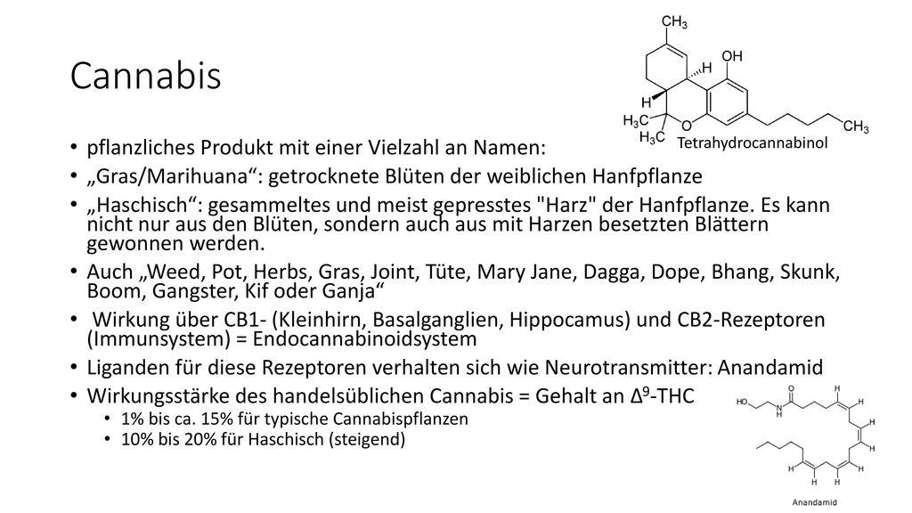 Cannabis pflanzliches Produkt mit einer Vielzahl an Namen:
