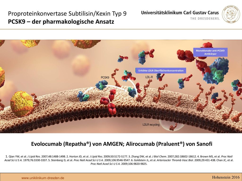 Proproteinkonvertase Subtilisin/Kexin Typ 9