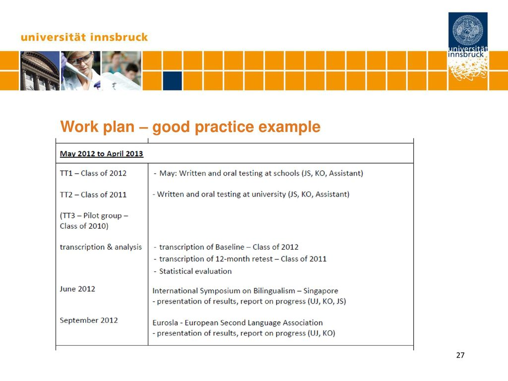 Work plan – good practice example