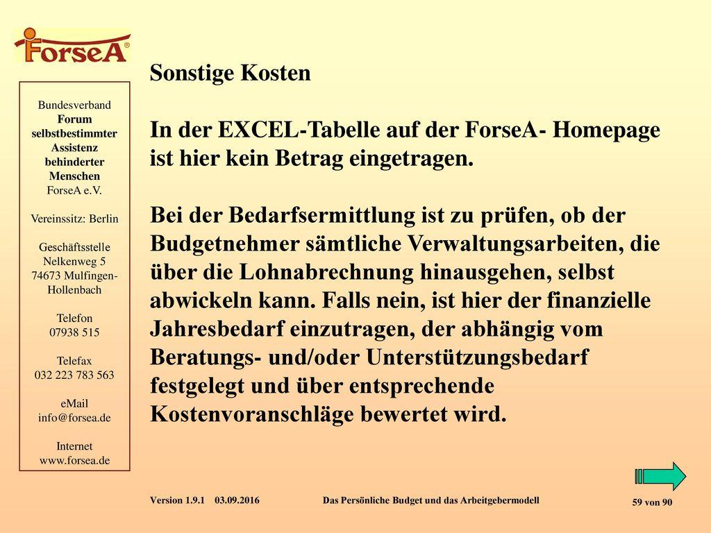 Sonstige Kosten In der EXCEL-Tabelle auf der ForseA- Homepage ist hier kein Betrag eingetragen.