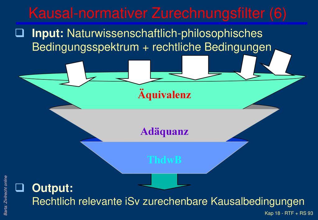 Kausal-normativer Zurechnungsfilter (6)