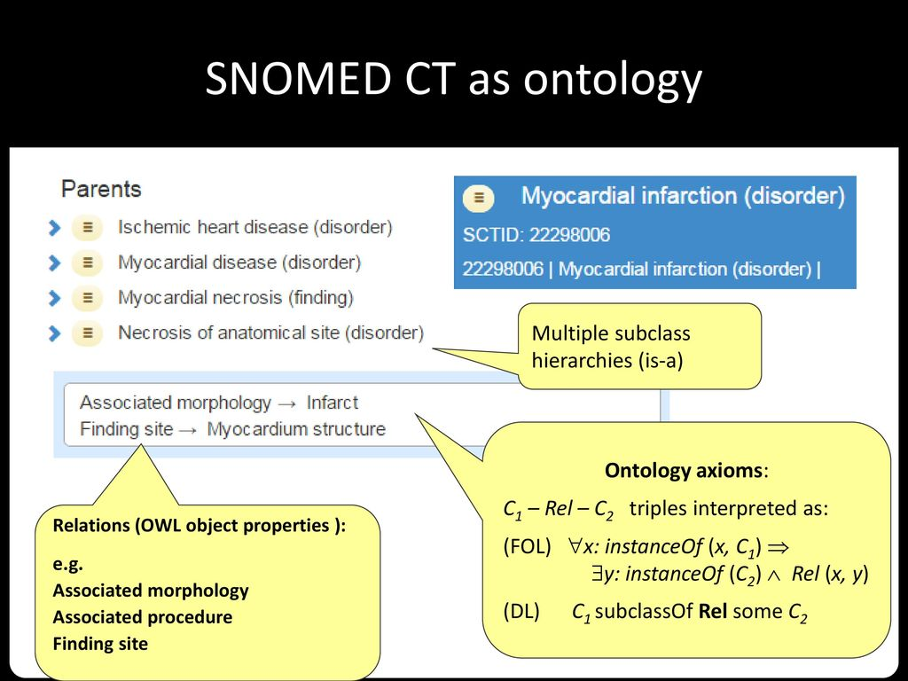 SNOMED CT as ontology Multiple subclass hierarchies (is-a)