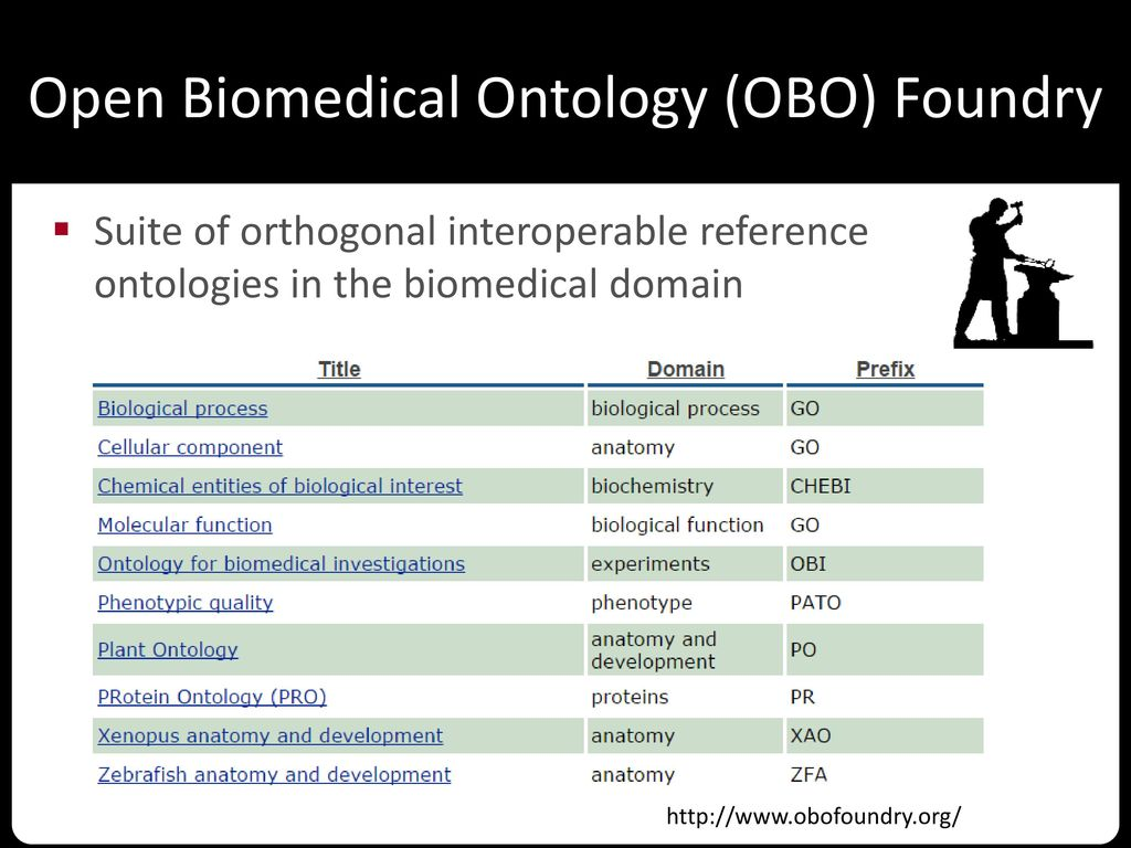 Open Biomedical Ontology (OBO) Foundry