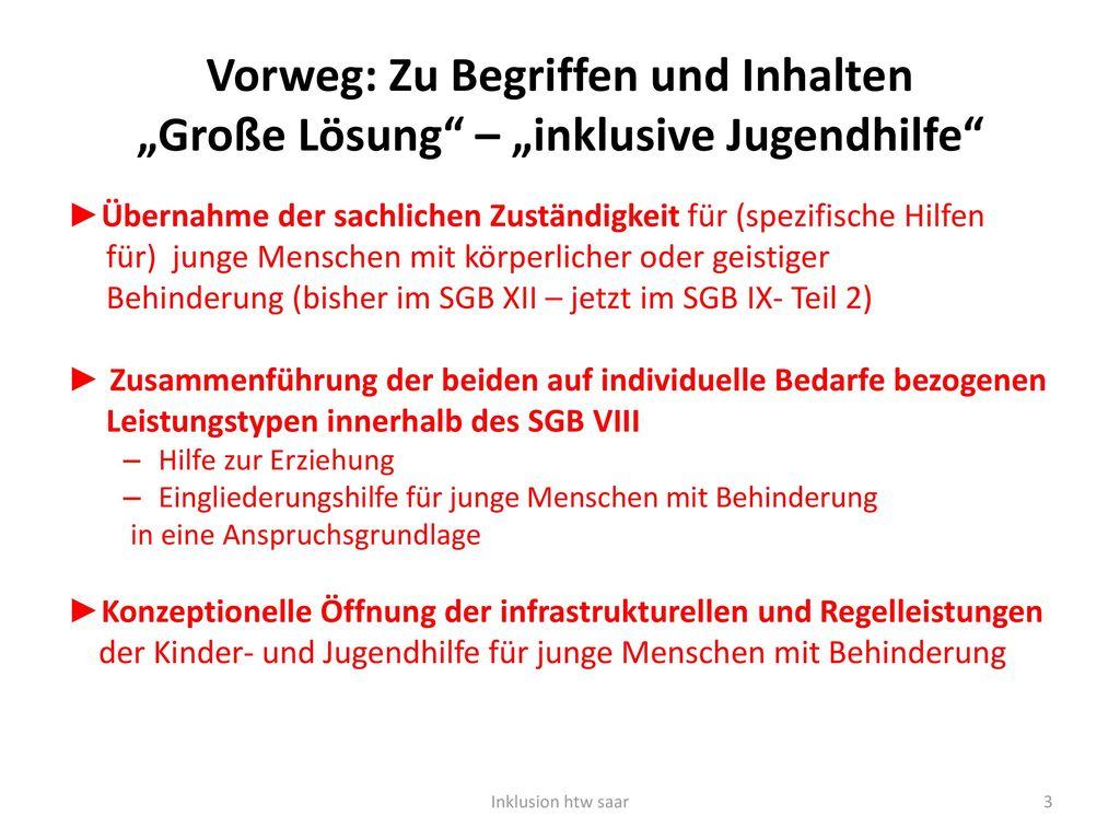 """Vorweg: Zu Begriffen und Inhalten """"Große Lösung – """"inklusive Jugendhilfe"""