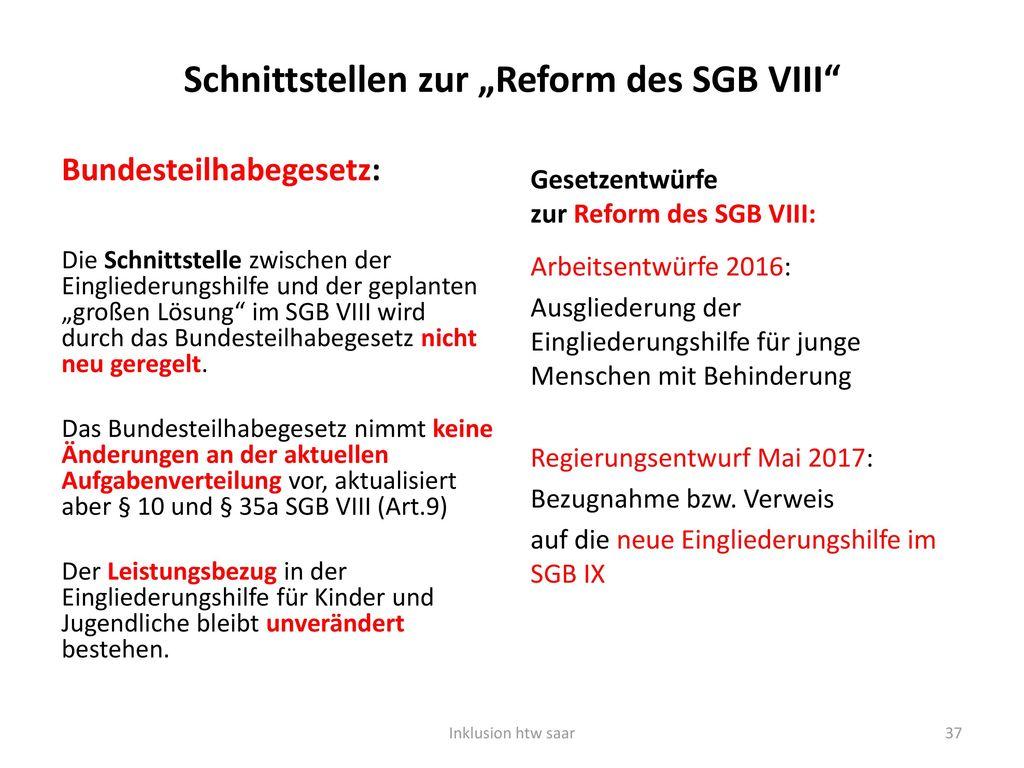 """Schnittstellen zur """"Reform des SGB VIII"""