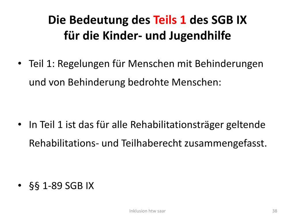 Die Bedeutung des Teils 1 des SGB IX für die Kinder- und Jugendhilfe