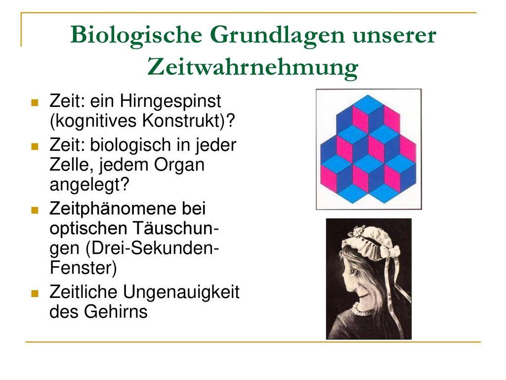 Biologische Grundlagen unserer Zeitwahrnehmung