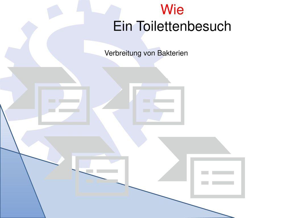 Wie Ein Toilettenbesuch